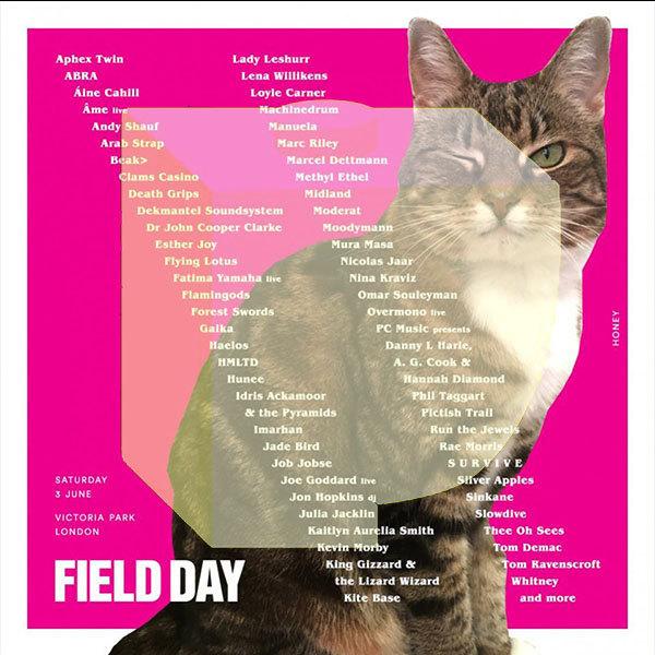 fieldday2